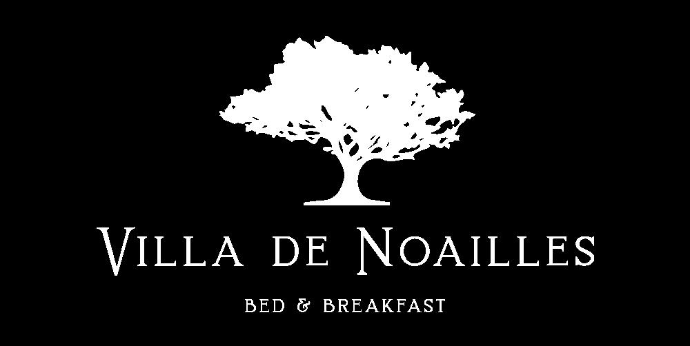 Villa de Noailles logo
